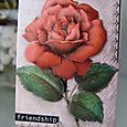 ATC - Friendship Rose