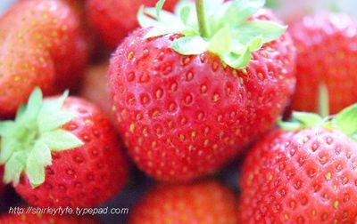 Strawberry Jam 1