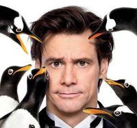 Mr Popper Penguins
