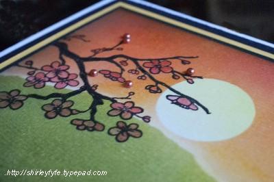 Kaszazz - Blended Sunset Card Close-up 1