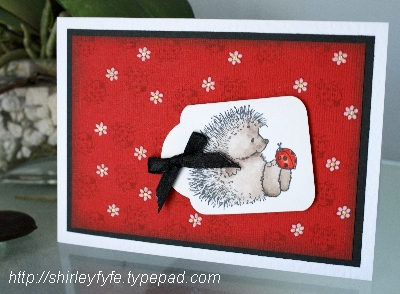 Hedgehog Ladybird Greeting Card 1