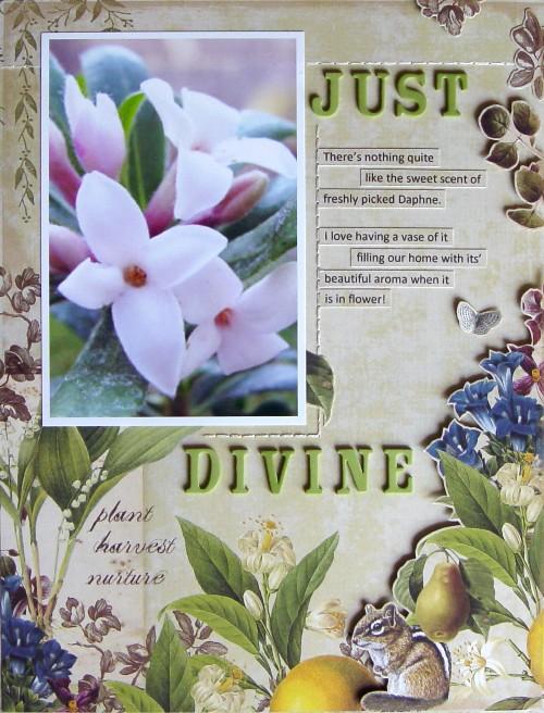 Just Divine